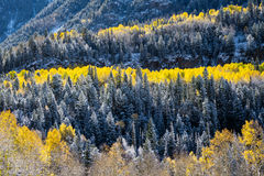 Fall Foliage in the San Juan Mountains Stock Photos