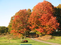 Fall Foliage in Saratoga NY Royalty Free Stock Image
