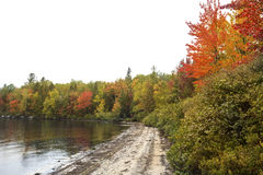 Fall foliage on shoreline of Sturdevant Pond in Magalloway, Main Stock Photography