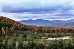Fall foliage southern Vermont Stock Photography