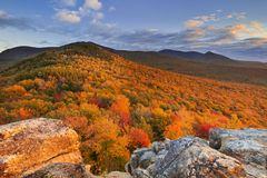 Fall foliage at sunset, New Hampshire, USA Royalty Free Stock Photo