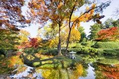 Fall Foliage in Texas Stock Photo