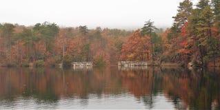 Hanging Rock State Park. Fall foliage under a heavy fog at Hanging Rock State Park near Danbury, North Carolina Royalty Free Stock Photography