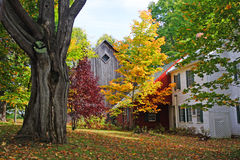 Fall foliage at Vermont, USA Stock Photography