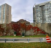 Fall Foliage on a Wall. This is a Fall picture of colorful fall foliage on the ivy on a wall of Lake Shore Drive located in Chicago, Illinois in Cook County royalty free stock image