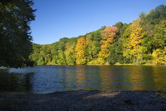 Fall foliage on the Westfield River, Massachusetts. Royalty Free Stock Images