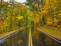 Fall foliage wet road in Vermont, USA Royalty Free Stock Image