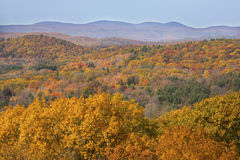 Fall foliage in woods of western Connecticut, from Mohawk Mounta. View from Mohawk Mountain in Cornwall, Connecticut, with fall foliage on the hillsides and low Royalty Free Stock Photography