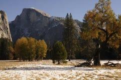 Fall Foliage at Yosemite Stock Photos