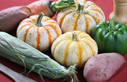 Fall food ingredients. Arrangement of ingredients, a stalk of corn, yam, green pepper, carrot, and pumpkins Stock Images