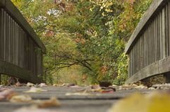 Fall Footbridge. Leaves scattered on a footbridge in New York.  This is autumn Royalty Free Stock Photo