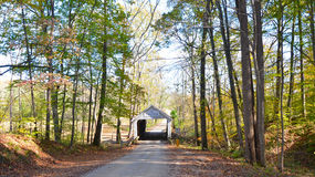 Fall forest and covered bridge Royalty Free Stock Photo