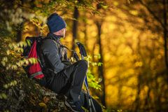 Fall Forest Hiking royalty free stock photography