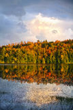 Fall forest and lake royalty free stock image