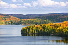 Fall forest and lake Stock Photography