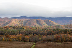 Fall forest and mountains Royalty Free Stock Photography