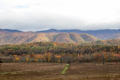 Fall forest and mountains Royalty Free Stock Images