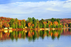 Fall forest reflections Royalty Free Stock Photography