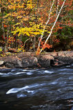 Fall forest and river landscape Royalty Free Stock Photos