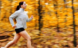 Fall Forest Runner Royalty Free Stock Image