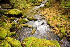 Fall forest stream Elomovsky in russian Lazo reserve Stock Photo