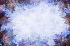 Fall frame. A grunge textured frame of frost tipped leaves Royalty Free Stock Photo