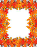 fall frame leaves thanksgiving 库存照片