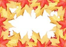 fall frame leaves thanksgiving Royaltyfri Foto