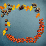 Fall frame, pumpkins, cones, acorn, leaves Royalty Free Stock Photography