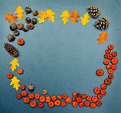 Fall frame, pumpkins, cones, acorn, leaves Royalty Free Stock Photos