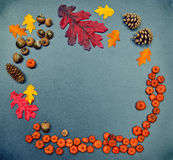 Fall frame, pumpkins, cones, acorn, oak leaves Stock Photo