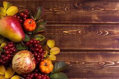 Fall frame with small orange pumpkins, rosehip leaves, apple, pear and viburnum berries on the rustic wooden background, copy royalty free stock image