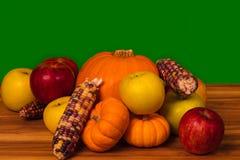 Fall-Frucht für Feiertage Stockfotografie