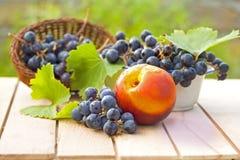 Fall Fruit Stock Photos