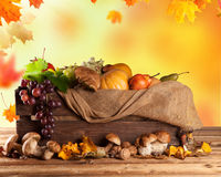 Fall fruit and vegetables on wood. Thanksgiving. Fall fruit and vegetables in wooden box. Thanksgiving concept of harvested food Royalty Free Stock Images
