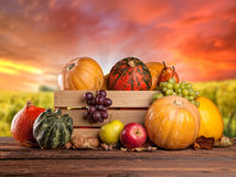 Fall fruit and vegetables on wood. Thanksgiving. Fall fruit and vegetables in wooden box. Thanksgiving concept of harvested food Stock Photo