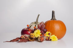 Fall Fruit and Veggie Display Stock Image