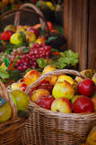 Fall fruits market Stock Photography