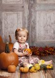 Fall Fun Stock Images
