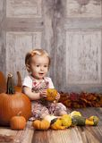 Fall Fun Stock Image