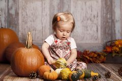 Fall Fun Royalty Free Stock Photography