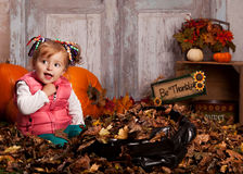 Fall fun. Stock Photography