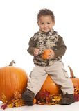 Fall Fun Royalty Free Stock Photo