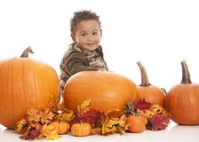 Fall Fun Stock Photography