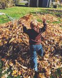 Fall Fun Stock Photo