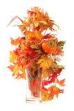 Fall: Gelbe und Rot-Blätter und Kürbis getrennt Stockfoto