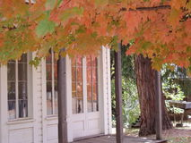 Fall in Ghost Town. Fall colors accent old building in California Ghost Town royalty free stock images