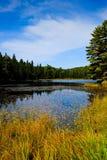 Fall in Glacier National Park Stock Photo