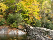 Fall golden foliage along the Pigeon River. This is a typical vision of fall in the Smokey mountains Stock Photo