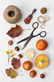 Fall Goodies Royalty Free Stock Photography